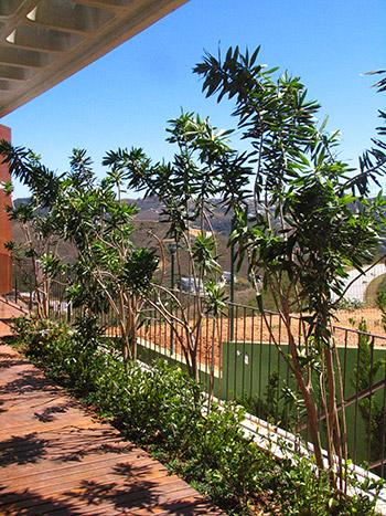 Jardim residência DB