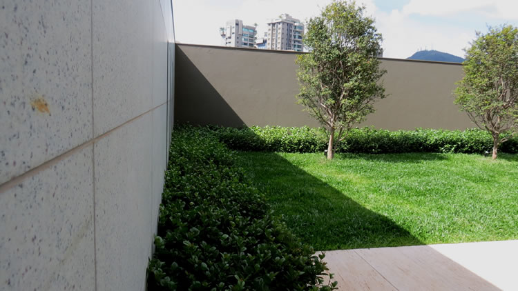 Jardim Edifício Da Vinci