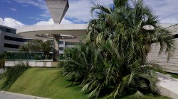 Jardim VG